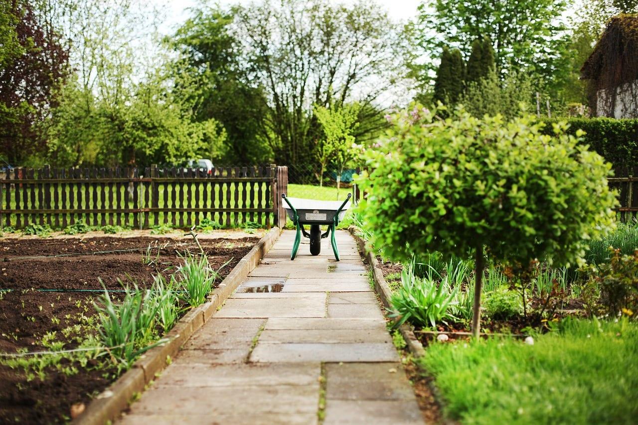 6 niezbędnych rzeczy do wykonania w ogrodzie przed nadejściem wiosny