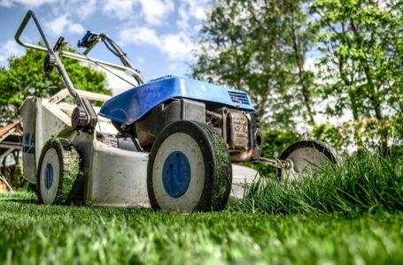 Jaką kosiarkę ogrodową kupić? – kryteria dopasowania kosiarki