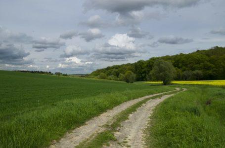 Odrolnienie działki – praktyczny poradnik krok po kroku