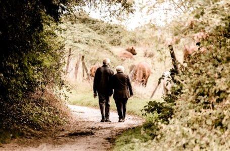 Odwrócona hipoteka, dożywotnia renta – dodatkowa emerytura w zamian za mieszkanie
