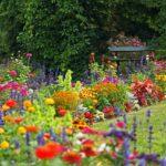 Rabaty kwiatowe - jak je zaplanować