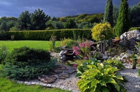 Skalniak w ogrodzie – jakie rośliny odnajdą się w przydomowym skalniaku