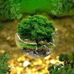 Jak być bardziej przyjaznym dla naszego środowiska?