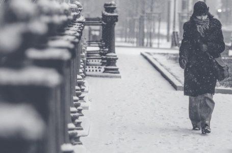 Śniegołapy rurowe – na czym polega ich działanie?