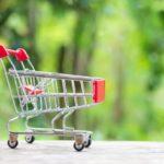 Internetowy sklep ogrodniczy – od czego zacząć?