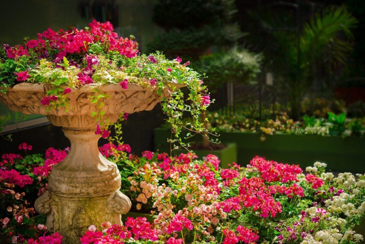 Jak optymalnie oświetlić ogród?