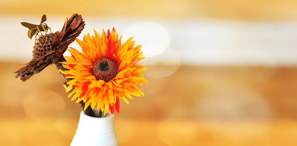 Kompozycje kwiatowe – wybierz wyjątkowe dekoracje do każdego pomieszczenia!
